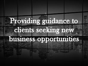 business-1 - image business-1-1 on https://lawfirmsr.com